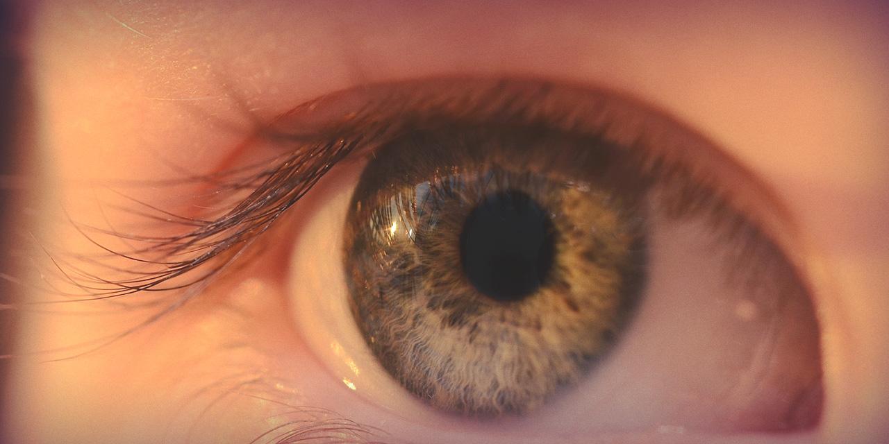 Uppföljnings- och vårdtjänster för glaukom
